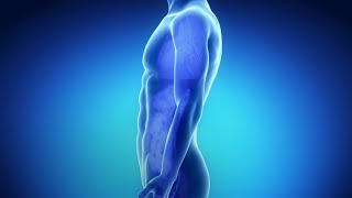 Lower Risk For Stomach Cancer | WebMD