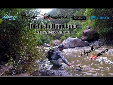Fly Fishing México Wild Trout No.9 / HASTA EL ULTIMO LANCE