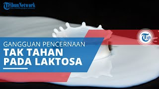 Intoleransi Laktosa, Gangguan Pencernaan hingga Diare akibat Tubuh Tidak Dapat Mencerna Laktosa