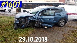 Новый видеообзор «Дорожные войны!» за 29.10.2018. Видео № 1601.