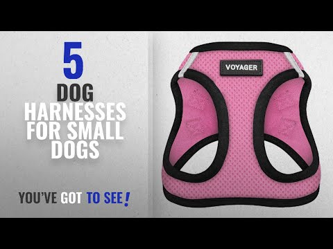 Top 5 Dog Harnesses For Small Dogs [2018 Best Sellers]: Voyager All Weather No Pull Step-in Mesh Dog