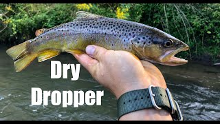 Fly Fishing Late Summer Wisconsin Driftless