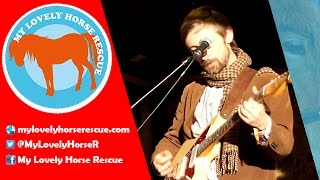 Neil Hannon - My Lovely Horse