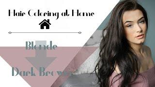 Blonde To Dark Brown | Hair Coloring At Home | Meet Me In Vogue