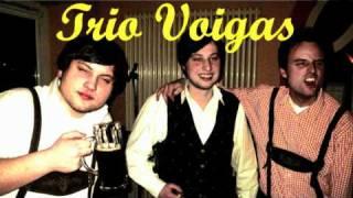 Trio Voigas - Alles klar an der Bar