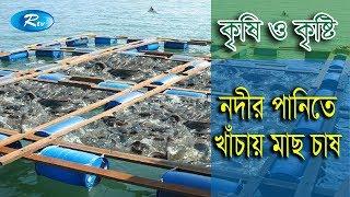 Krishi o Krishti | নদীর পানিতে খাঁচায় মাছ চাষ | Ep - 106 | Rtv Lifestyle | Rtv