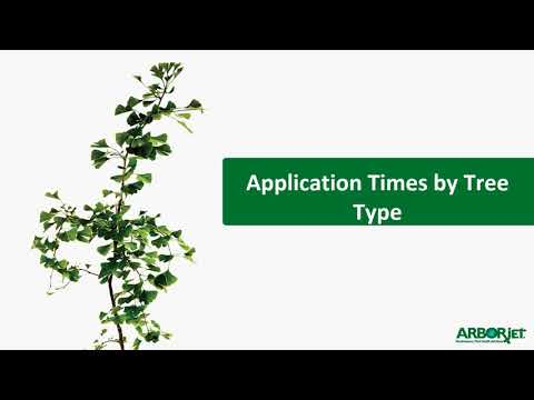 ACE-jet Insecticide Solution | Tree Injections | Arborjet