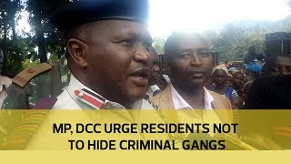 MP, DCC urge residents not to hide criminal gangs | Kholo.pk