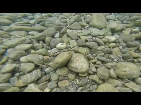 Lechausee Divespot - Andrés Tauchvideos , Lechausee,Reutte,Österreich