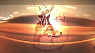 Fine Animal - Lay Awake Music Video