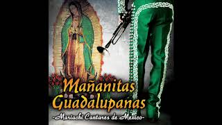 Mañanitas Guadalupanas (Disco Completo) Mariachi Cantares De Mexico