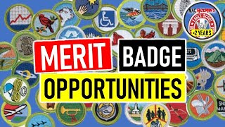 Finding MB Opportunities - How To Begin Merit Badges