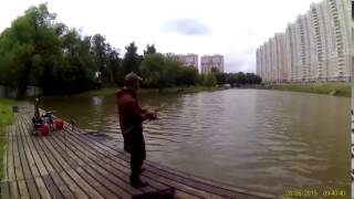 Химки левобережная платная рыбалка