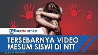 Kronologi Tersebarnya Video Mesum Siswi SMA Alor NTT, Ternyata Korban Diperkosa Pelaku 8 Kali