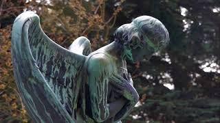 La Verdadera Historia De Los ángeles Caídos
