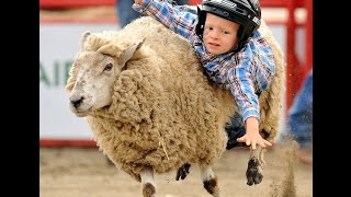 Mutton Bustin ~ Benton Franklin Rodeo