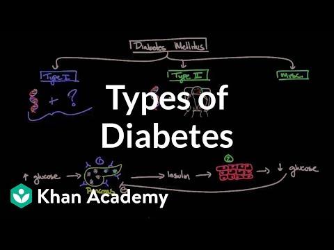 Types of diabetes | Endocrine system diseases | NCLEX-RN | Khan Academy