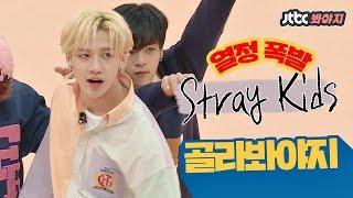 [골라봐야지][HDENG] 갓 한 살 된 '스트레이 키즈(Stray Kids)'의 열정 폭발 모음ZIP♥ #아이돌룸 #JTBC봐야지