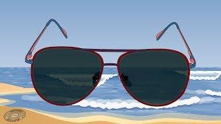 How Do Polarized Sunglasses Work?!