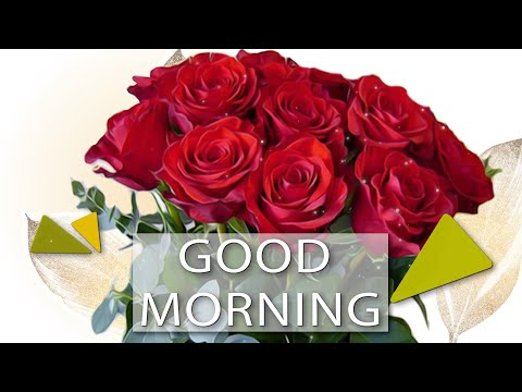 🌼Good morning🌼Best Wishes for you