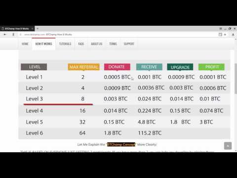 BTChamp Маркетинг план обзор   0 0005 BTC в 118 BTC 1