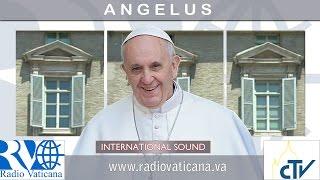2017.01.15 Angelus Domini