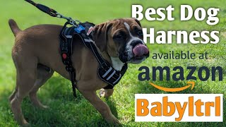 Best Dog Harness 2020 Babyltrl