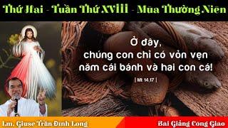 LTLTX   Bài Giảng Thứ Hai   Tuần Thứ XVIII   Mùa Thường Niên | Lm. Giuse Trần Đình Long