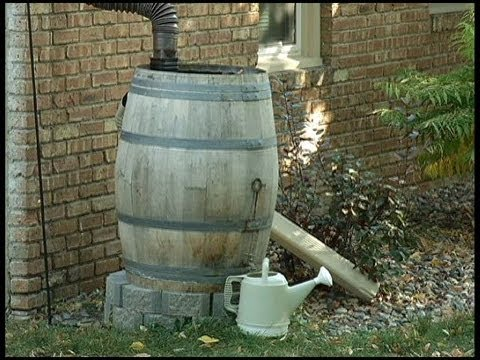 In The Garden: Putting Wine Barrels Back To Work