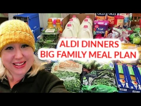 LARGE FAMILY GROCERY SHOPPING HAUL for FEBRUARY   ALDI DEALS + Large Family Meal Plan!