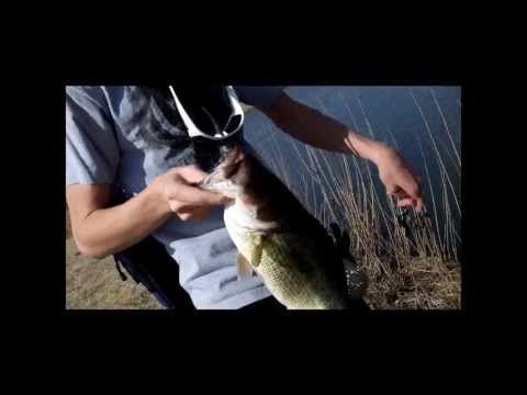Prespawn Fishing at the Little Pond (10lbs)