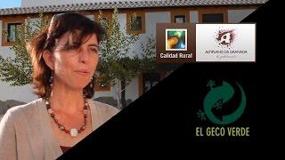 Video del alojamiento El Geco Verde