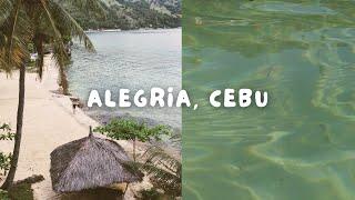 Exploring Alegria, Cebu (Cambais & Cancalanog Falls)