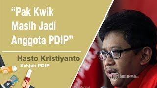Hasto Kristiyanto: Kwik Kian Gie Masih Kader PDI Perjuangan