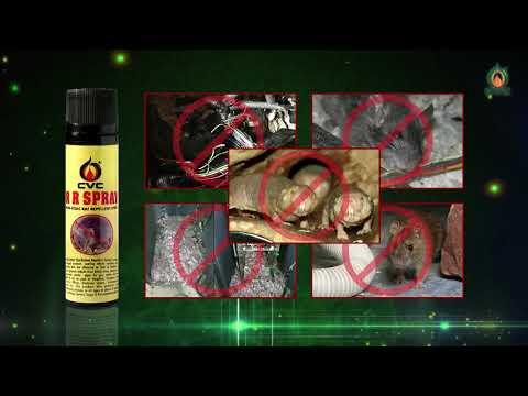 CVC Rat Repellent Spray