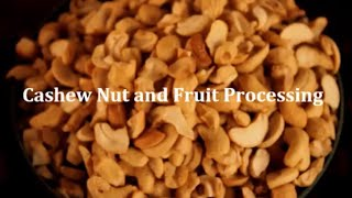 preview picture of video 'Peace Corps Ghana: Cashew Nut and Fruit Processing'