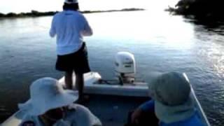 preview picture of video 'POSADA PASO DE LA PATRIA - BAIT CASTING -'