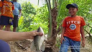 Câu Mồi Trứng Kiến Dính Đủ Thứ Cá ở Đồng Tháp l Câu cá Thác Lác