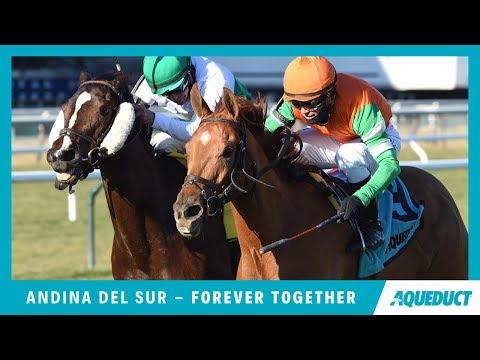 Sister Sledge Racing Horse Racing Profile Https Www
