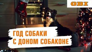 Дон Собаконе встречает год Собаки