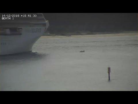 Así se salvaron de ser hundidos por crucero en Nueva Zelanda