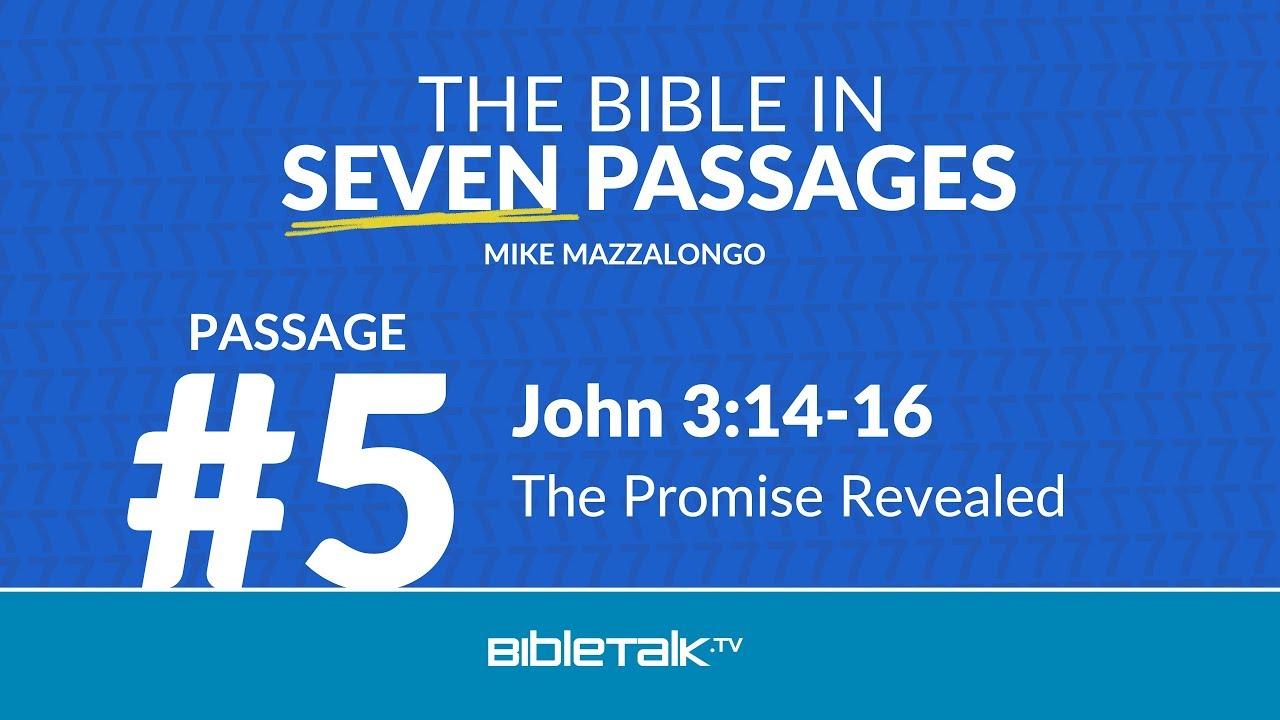 Passage #5 – John 3:14-16