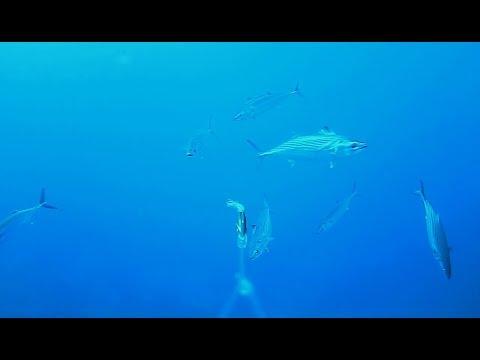 Pesca su Ilmen