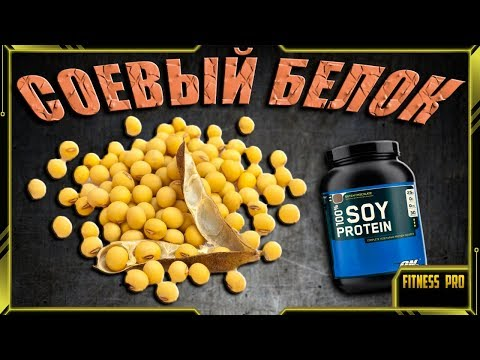 Польза и вред сои и соевого белка