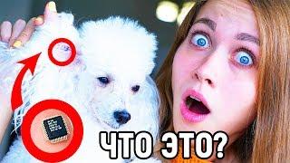 ЧТО ОНИ СДЕЛАЛИ!? ТБИ - 13 серия