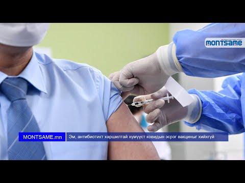 Эм, антибиотикт харшилтай хүмүүст ковидын эсрэг вакциныг хийхгүй