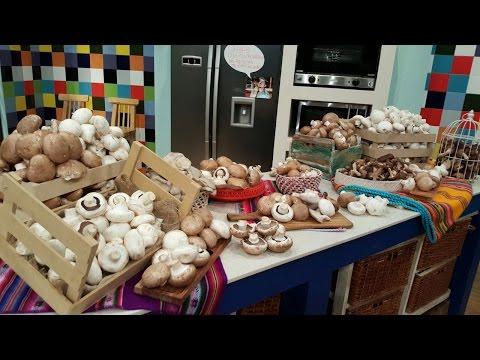 Todo sobre los hongos por Martín Pautaso