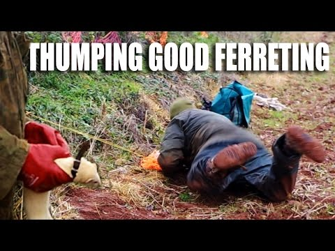 Thumping Good Ferreting