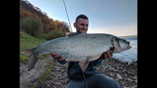 Трофейная рыбалка на жереха!
