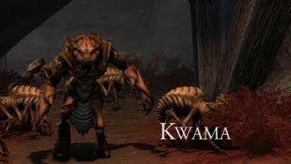 Trailer Kwama